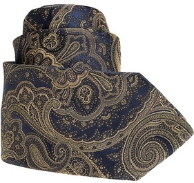 A Brioni navy paisley tie. Can't get any better.